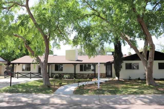 8428 N 17TH Avenue, Phoenix, AZ 85021 (MLS #5906509) :: Yost Realty Group at RE/MAX Casa Grande