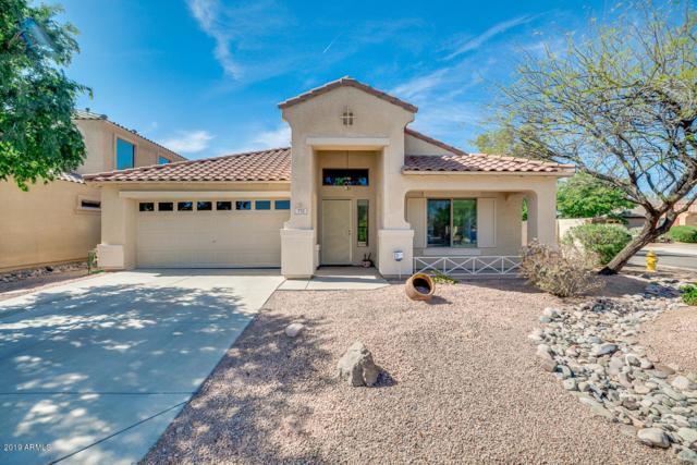 772 E Palomino Way, San Tan Valley, AZ 85143 (MLS #5906552) :: Yost Realty Group at RE/MAX Casa Grande