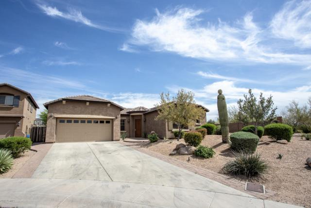 2326 W Aloe Vera Drive, Phoenix, AZ 85085 (MLS #5906557) :: Yost Realty Group at RE/MAX Casa Grande