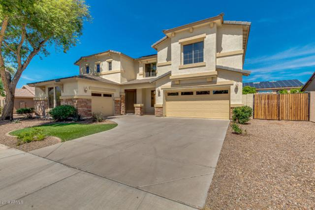 18510 E Oak Hill Lane, Queen Creek, AZ 85142 (MLS #5906565) :: Yost Realty Group at RE/MAX Casa Grande