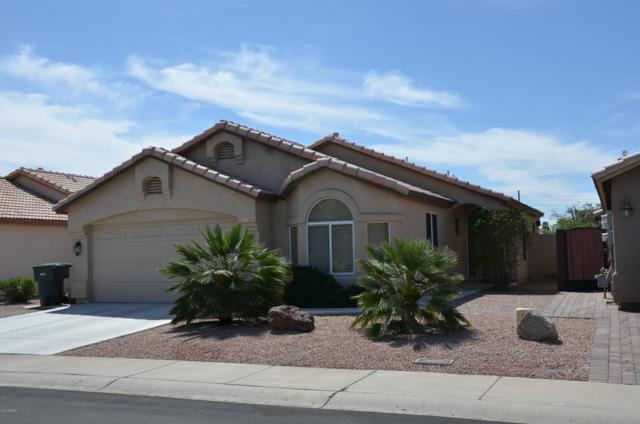 115 W Rockwood Drive, Phoenix, AZ 85027 (MLS #5906588) :: The Everest Team at My Home Group
