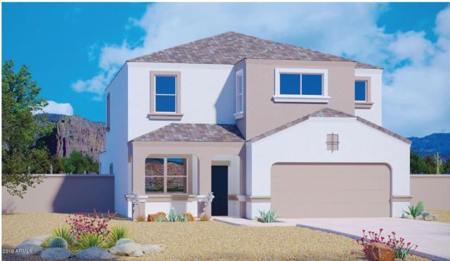 3940 N 310TH Lane, Buckeye, AZ 85396 (MLS #5906600) :: The Results Group