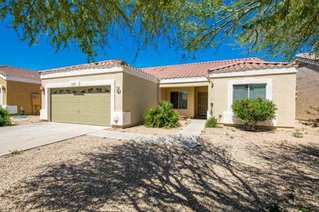 12064 W Dreyfus Drive, El Mirage, AZ 85335 (MLS #5906616) :: Yost Realty Group at RE/MAX Casa Grande