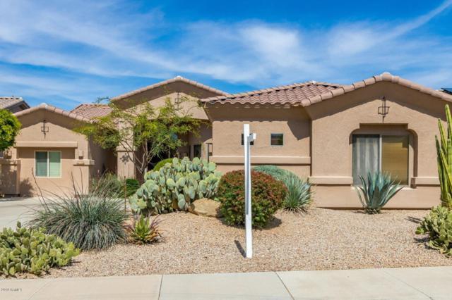 18362 W Piedmont Road, Goodyear, AZ 85338 (MLS #5906622) :: Yost Realty Group at RE/MAX Casa Grande