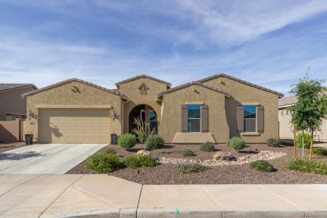 3934 E Mia Lane, Gilbert, AZ 85298 (MLS #5906630) :: Yost Realty Group at RE/MAX Casa Grande