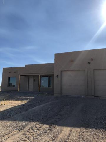 29304 N 227TH Drive, Wittmann, AZ 85361 (MLS #5906631) :: The Kenny Klaus Team