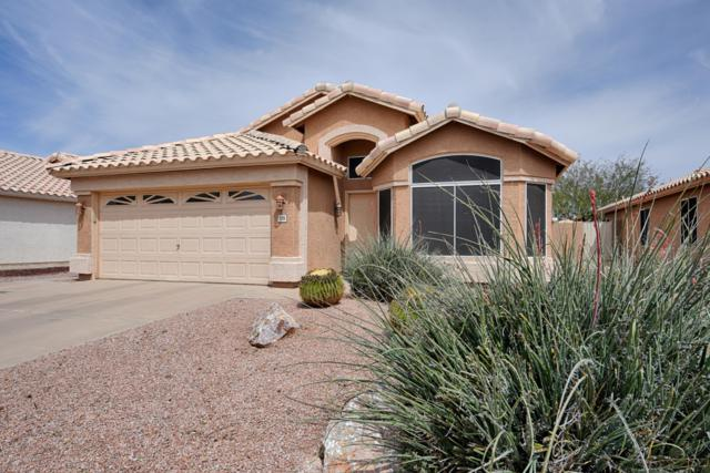 7138 E Jacob Avenue, Mesa, AZ 85209 (MLS #5906664) :: The Bill and Cindy Flowers Team