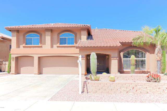 7310 W Crabapple Drive, Peoria, AZ 85383 (MLS #5906701) :: Yost Realty Group at RE/MAX Casa Grande
