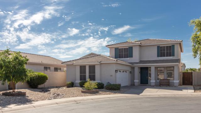 243 W Mahogany Place, Chandler, AZ 85248 (MLS #5906711) :: Yost Realty Group at RE/MAX Casa Grande
