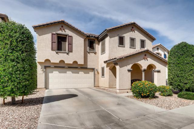 11008 W College Drive, Phoenix, AZ 85037 (MLS #5906741) :: Yost Realty Group at RE/MAX Casa Grande