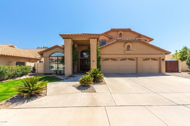 1635 W Lantana Court, Chandler, AZ 85248 (MLS #5906756) :: CC & Co. Real Estate Team