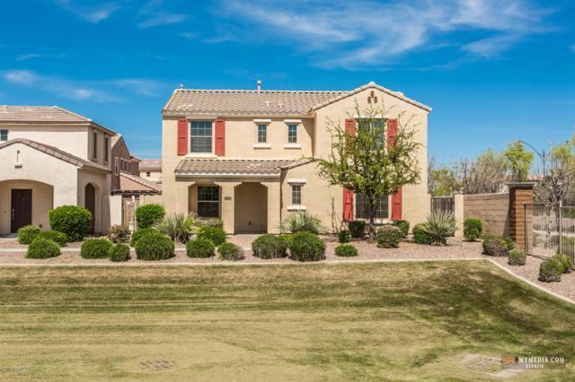 1749 S Balboa Drive, Gilbert, AZ 85295 (MLS #5906759) :: Yost Realty Group at RE/MAX Casa Grande