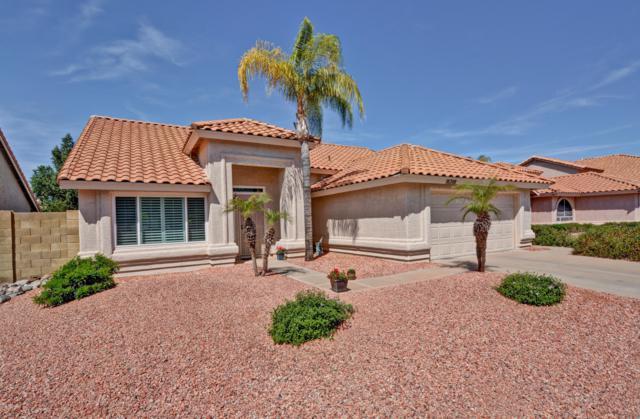 18208 N 45TH Street, Phoenix, AZ 85032 (MLS #5906800) :: Yost Realty Group at RE/MAX Casa Grande