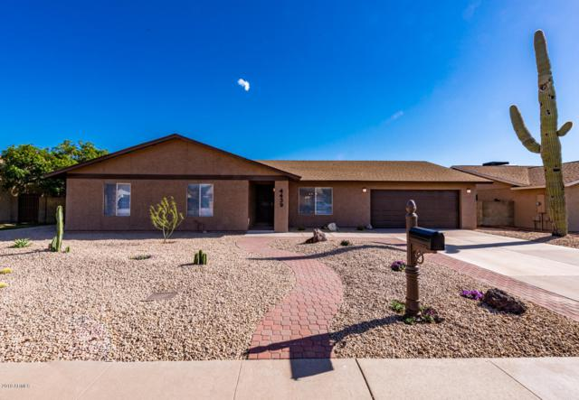 4439 W Shaw Butte Drive, Glendale, AZ 85304 (MLS #5906828) :: Yost Realty Group at RE/MAX Casa Grande