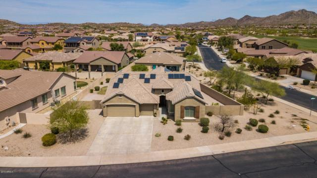 18116 W Buckhorn Drive, Goodyear, AZ 85338 (MLS #5906829) :: Cindy & Co at My Home Group