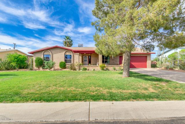 45034 W Fred Cole Lane, Maricopa, AZ 85139 (MLS #5906868) :: Yost Realty Group at RE/MAX Casa Grande