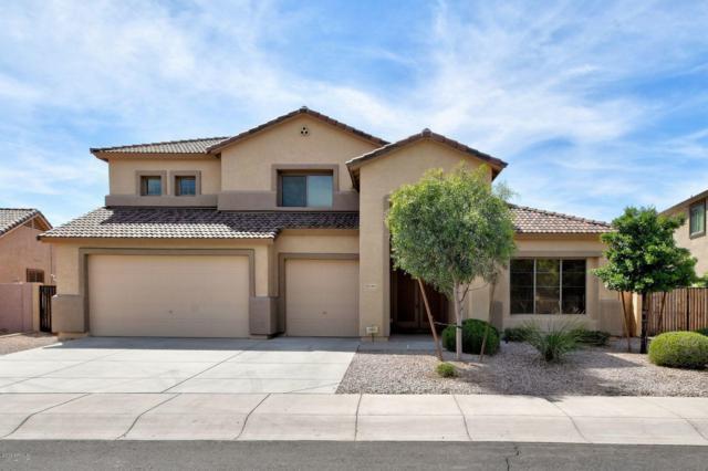 4464 N 151ST Drive, Goodyear, AZ 85395 (MLS #5906874) :: Yost Realty Group at RE/MAX Casa Grande