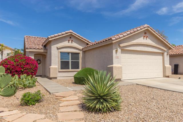 10854 W Sands Drive, Sun City, AZ 85373 (MLS #5906897) :: Yost Realty Group at RE/MAX Casa Grande