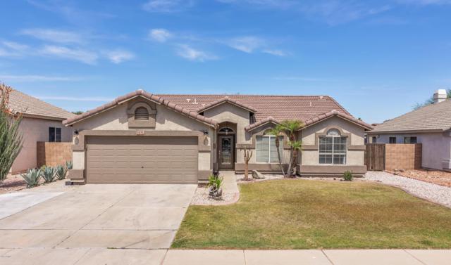 13176 W Ironwood Street, Surprise, AZ 85374 (MLS #5906901) :: Yost Realty Group at RE/MAX Casa Grande
