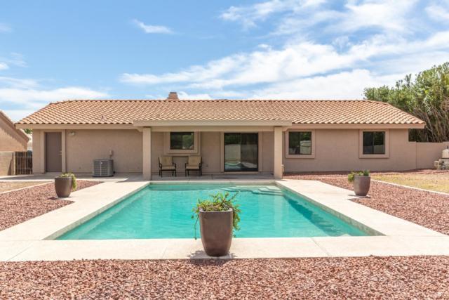 17112 E Rosita Drive, Fountain Hills, AZ 85268 (MLS #5907053) :: Yost Realty Group at RE/MAX Casa Grande