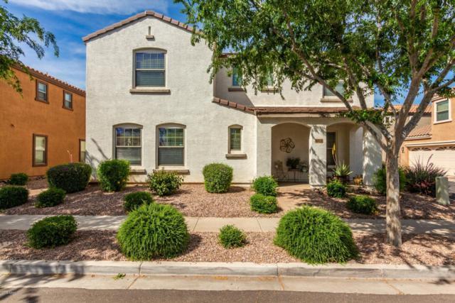 2658 E Megan Street, Gilbert, AZ 85295 (MLS #5907056) :: Occasio Realty