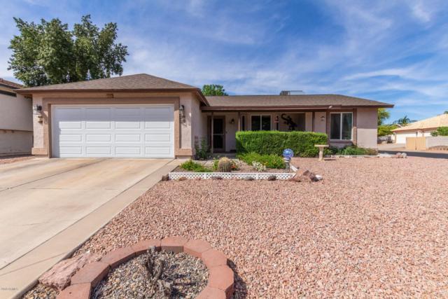 4062 E Holmes Avenue, Mesa, AZ 85206 (MLS #5907068) :: Yost Realty Group at RE/MAX Casa Grande