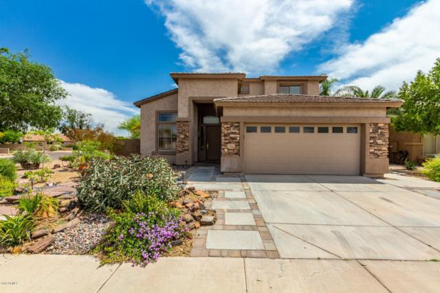 451 N Roger Way, Chandler, AZ 85225 (MLS #5907072) :: RE/MAX Excalibur