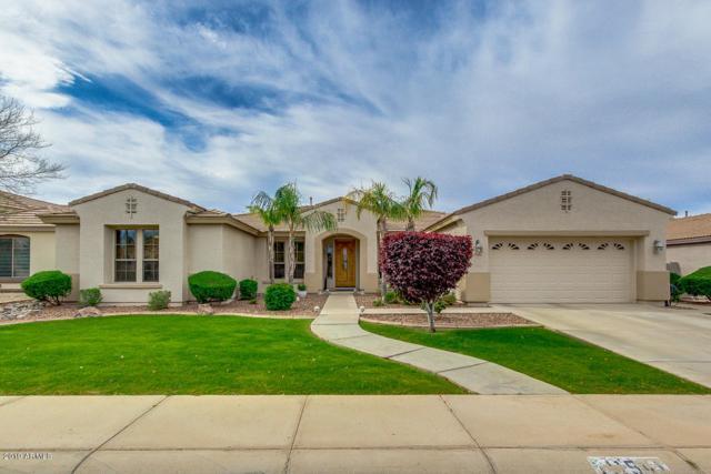11541 E Roselle Avenue, Mesa, AZ 85212 (MLS #5907128) :: Devor Real Estate Associates