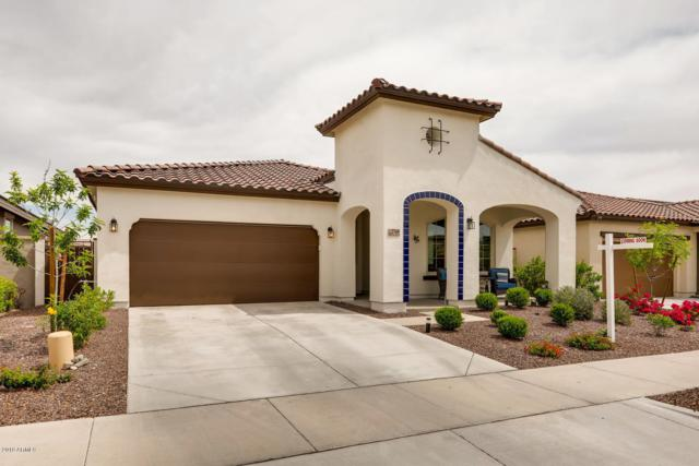 2769 N Springfield Street, Buckeye, AZ 85396 (MLS #5907173) :: The Results Group