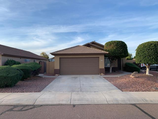 7636 W Angels Lane, Peoria, AZ 85383 (MLS #5907253) :: Yost Realty Group at RE/MAX Casa Grande