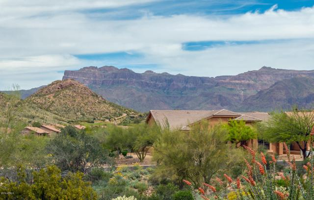 8784 E Golden Cholla Drive, Gold Canyon, AZ 85118 (MLS #5907257) :: The Kenny Klaus Team
