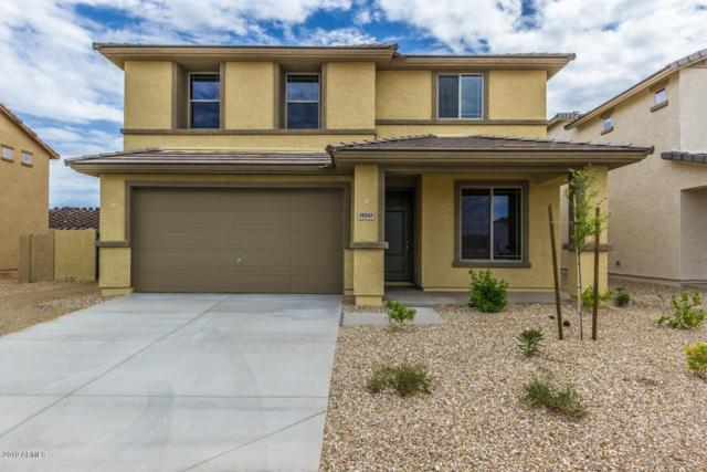18243 W Ida Lane, Surprise, AZ 85387 (MLS #5907278) :: Team Wilson Real Estate