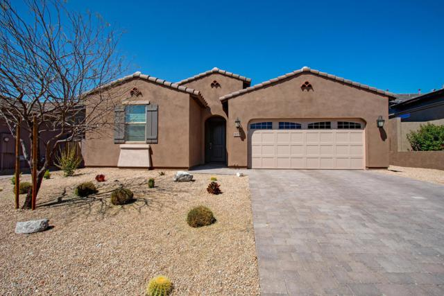 18570 W Acacia Drive, Goodyear, AZ 85338 (MLS #5907279) :: Arizona 1 Real Estate Team
