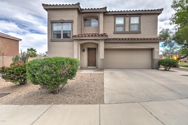 1717 W Amberwood Drive, Phoenix, AZ 85045 (MLS #5907281) :: Yost Realty Group at RE/MAX Casa Grande