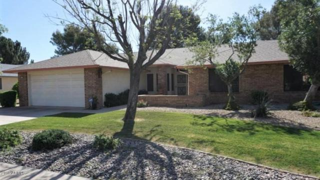 13719 W Greenview Drive, Sun City West, AZ 85375 (MLS #5907315) :: Yost Realty Group at RE/MAX Casa Grande