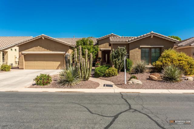 20489 N Wishing Well Lane, Maricopa, AZ 85138 (MLS #5907332) :: Yost Realty Group at RE/MAX Casa Grande