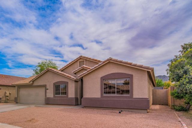 1629 E Desert Lane, Phoenix, AZ 85042 (MLS #5907337) :: RE/MAX Excalibur