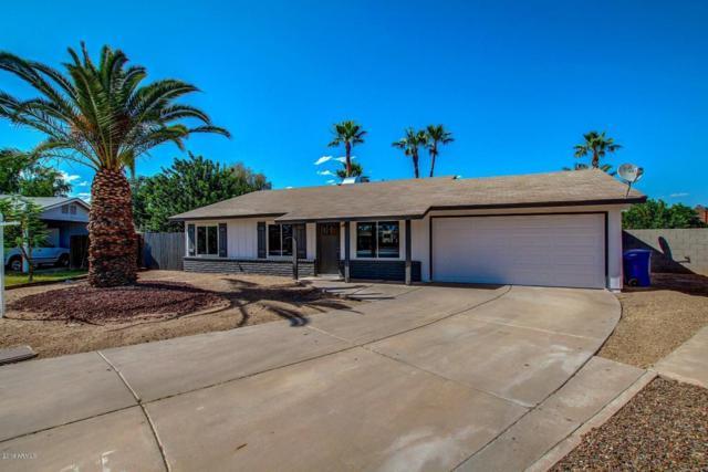 531 N Criss Street, Chandler, AZ 85226 (MLS #5907341) :: Occasio Realty
