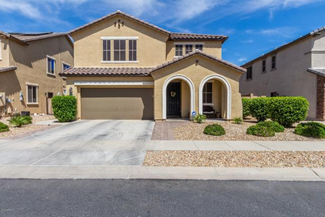 15562 W Jenan Drive, Surprise, AZ 85379 (MLS #5907345) :: Yost Realty Group at RE/MAX Casa Grande