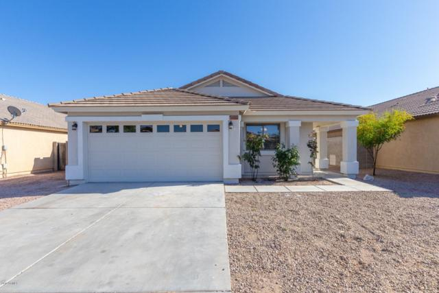 11233 W Chase Drive, Avondale, AZ 85323 (MLS #5907351) :: Yost Realty Group at RE/MAX Casa Grande