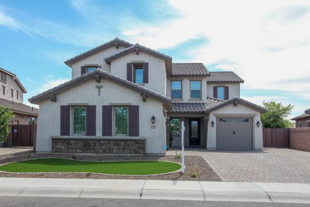 6161 S Fresno Street, Chandler, AZ 85249 (MLS #5907371) :: The Everest Team at My Home Group