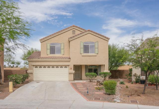 11110 W College Drive, Phoenix, AZ 85037 (MLS #5907457) :: Yost Realty Group at RE/MAX Casa Grande