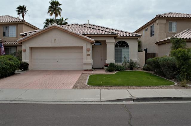 4681 W Toledo Street, Chandler, AZ 85226 (MLS #5907471) :: Yost Realty Group at RE/MAX Casa Grande