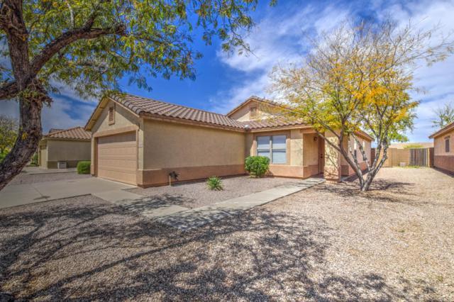11254 E Quarry Avenue, Mesa, AZ 85212 (MLS #5907499) :: Yost Realty Group at RE/MAX Casa Grande