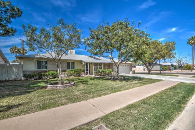 3702 W State Avenue, Phoenix, AZ 85051 (MLS #5907500) :: Yost Realty Group at RE/MAX Casa Grande