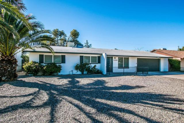 15202 N 26TH Street, Phoenix, AZ 85032 (MLS #5907504) :: Yost Realty Group at RE/MAX Casa Grande