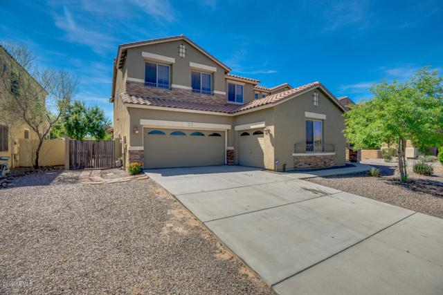 4211 E Nolan Place, Chandler, AZ 85249 (MLS #5907508) :: Occasio Realty