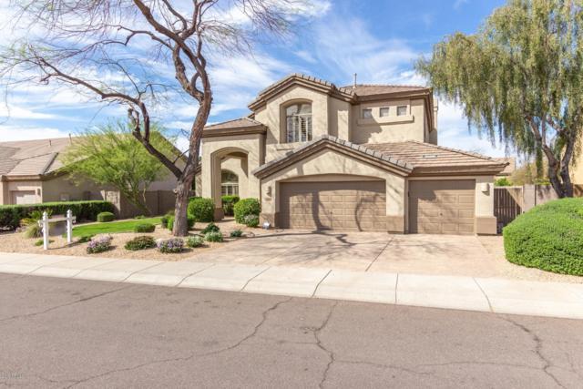14426 N 67TH Street, Scottsdale, AZ 85254 (MLS #5907510) :: My Home Group