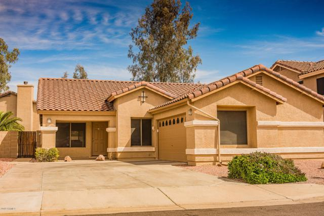 15872 W Tasha Drive, Surprise, AZ 85374 (MLS #5907527) :: Yost Realty Group at RE/MAX Casa Grande