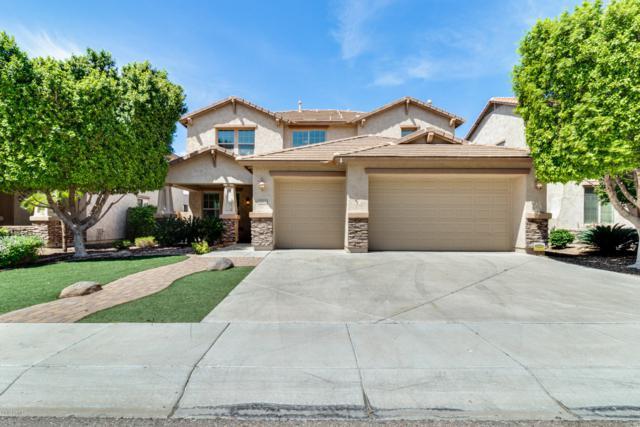 5122 W Swayback Pass, Phoenix, AZ 85083 (MLS #5907599) :: Yost Realty Group at RE/MAX Casa Grande